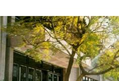 UNCU Universidad Nacional de Cuyo