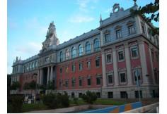 Universidad de Murcia Argentina Foto